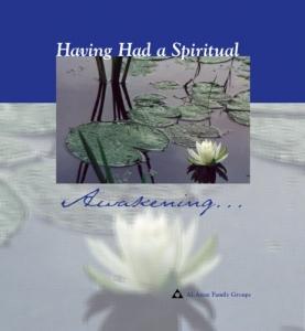Having had a Spiritual Awakening book cover
