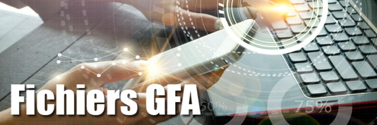 Fichiers GFA